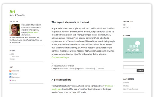 Ari Theme WordPress bezmaksas dizains